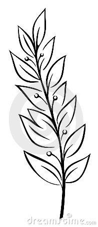 вектор лавра ветви