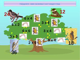 Определите каких насекомых съест каждая птица. 6 х 2 3 х 8 6 х 6 2 х 9 6 х 4