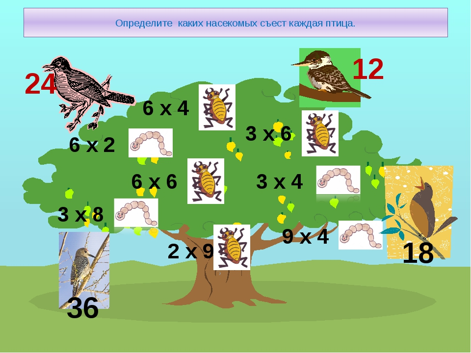 Определите каких насекомых съест каждая птица. 6 х 2 3 х 8 6 х 6 2 х 9 6 х 4...