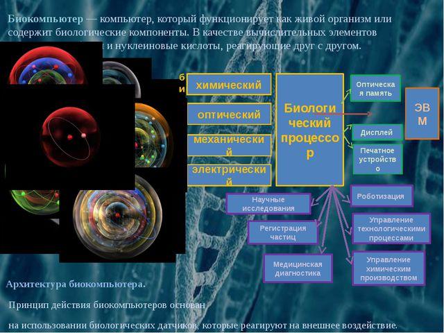 Архитектура биокомпьютера. Принцип действия биокомпьютеров основан на использ...