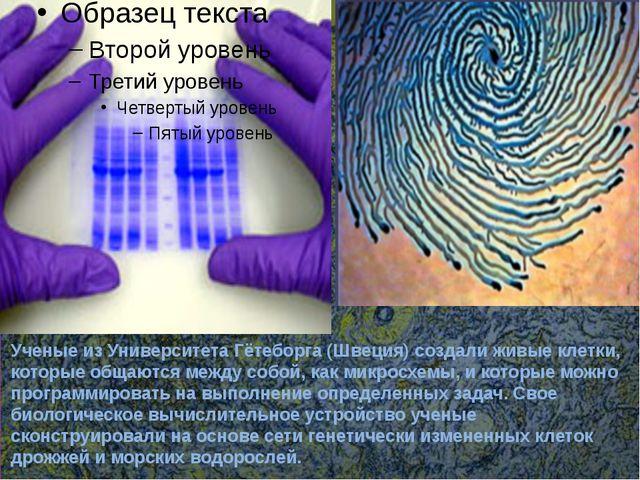 Последние достижения Ученые из Университета Гётеборга (Швеция) создали живые...