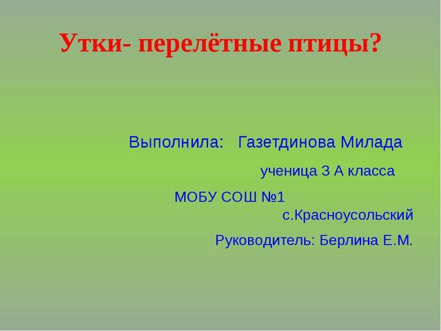Утки- перелётные птицы? Выполнила: Газетдинова Милада ученица 3 А класса МОБУ...