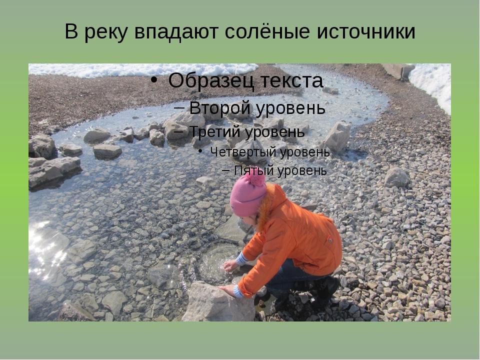В реку впадают солёные источники