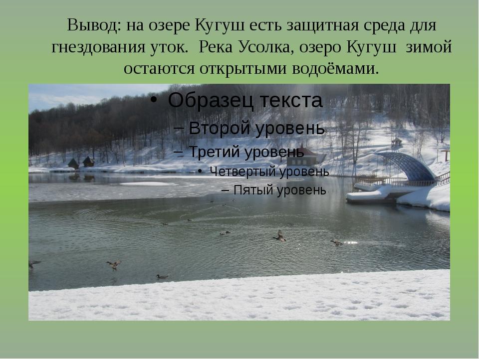 Вывод: на озере Кугуш есть защитная среда для гнездования уток. Река Усолка,...