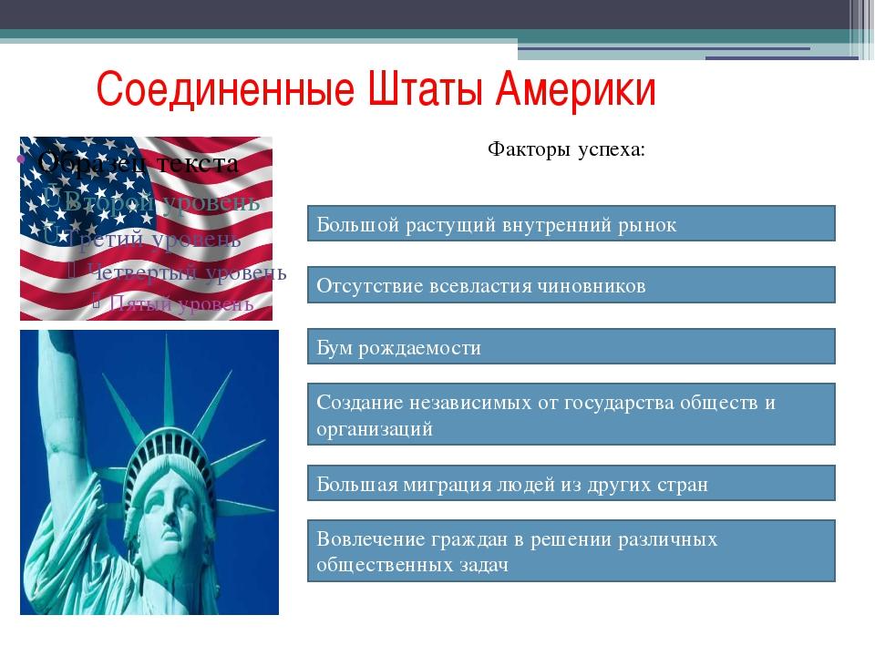 Соединенные Штаты Америки Факторы успеха: Большой растущий внутренний рынок О...