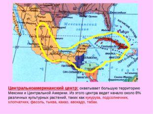 Центральноамериканский центр: охватывает большую территорию Мексики и Централ
