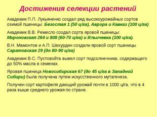 Достижения селекции растений Академик П.П. Лукьяненко создал ряд высокоурожай