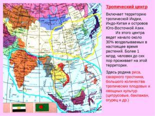 Тропический центр Включает территорию тропической Индии, Индо-Китая и острово