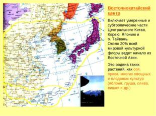 Восточнокитайский центр Включает умеренные и субтропические части Центральног