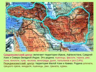 Среднеазиатский центр: включает территории Ирана, Афганистана, Средней Азии и