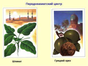 Переднеазиатский центр Шпинат Грецкий орех