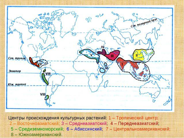 Центры происхождения культурных растений: 1 – Тропический центр; 2 – Восточно...