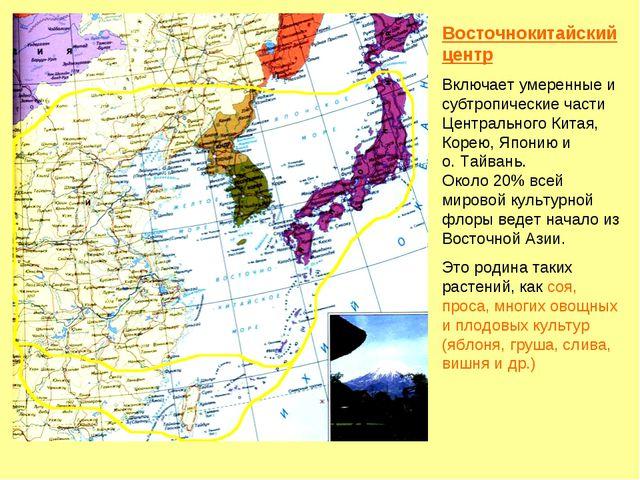 Восточнокитайский центр Включает умеренные и субтропические части Центральног...