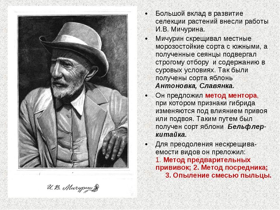 Большой вклад в развитие селекции растений внесли работы И.В. Мичурина. Мичур...