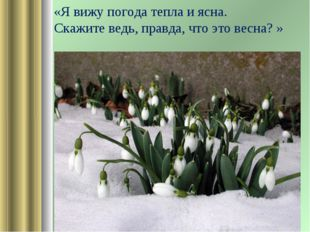 «Я вижу погода тепла и ясна. Скажите ведь, правда, что это весна? »