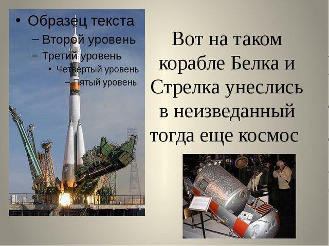 Вот на таком корабле Белка и Стрелка унеслись в неизведанный тогда еще космос