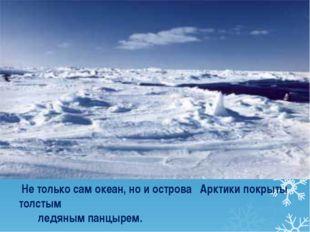 Не только сам океан, но и острова Арктики покрыты толстым ледяным панцырем.
