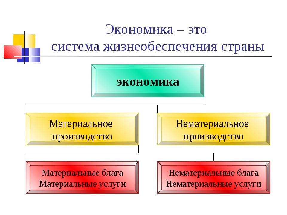 Экономика – это система жизнеобеспечения страны