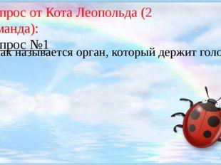 Вопрос от Кота Леопольда (2 команда): Вопрос №1 Как называется орган, которы