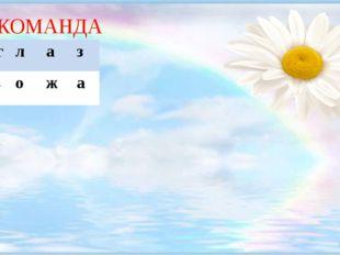 1 КОМАНДА 1.г л а з 2.к о ж а