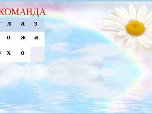 1 КОМАНДА 1.г л а з 2.к о ж а 3.у х о