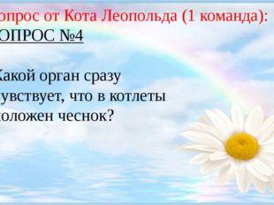 Вопрос от Кота Леопольда (1 команда): ВОПРОС №4 Какой орган сразу чувствует,