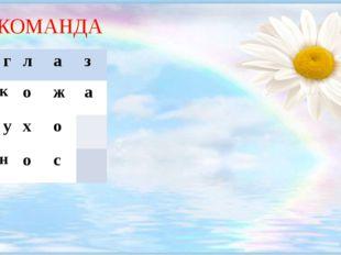 1 КОМАНДА 1.г л а з 2.к о ж а 3.у х о 4.н о с