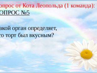 Вопрос от Кота Леопольда (1 команда): ВОПРОС №5 Какой орган определяет, что