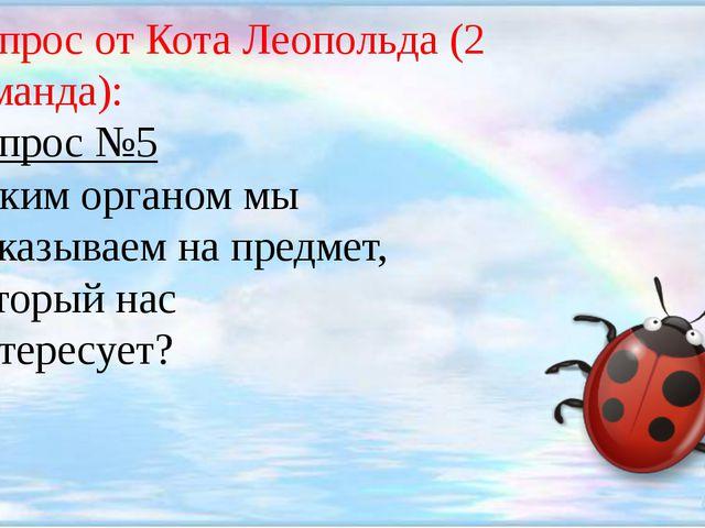 Вопрос от Кота Леопольда (2 команда): Вопрос №5 Каким органом мы показываем...
