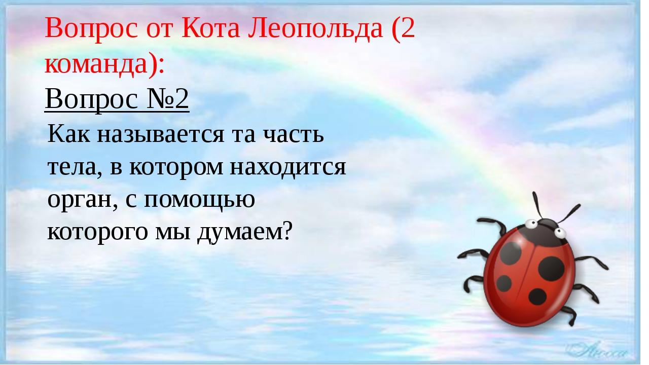 Вопрос от Кота Леопольда (2 команда): Вопрос №2 Как называется та часть тела...