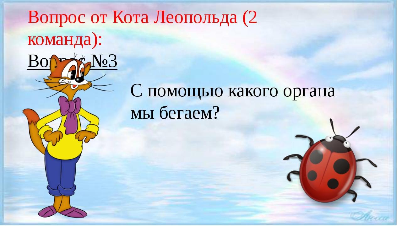 Вопрос от Кота Леопольда (2 команда): Вопрос №3 С помощью какого органа мы б...