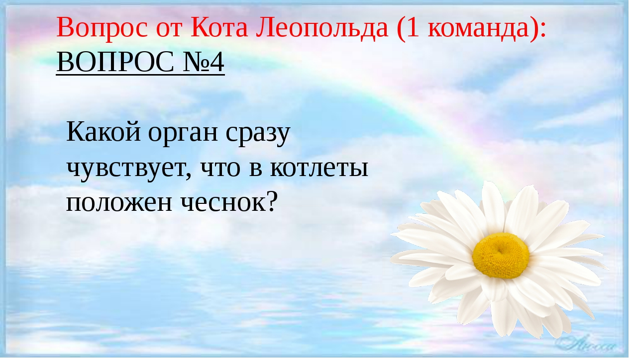 Вопрос от Кота Леопольда (1 команда): ВОПРОС №4 Какой орган сразу чувствует,...