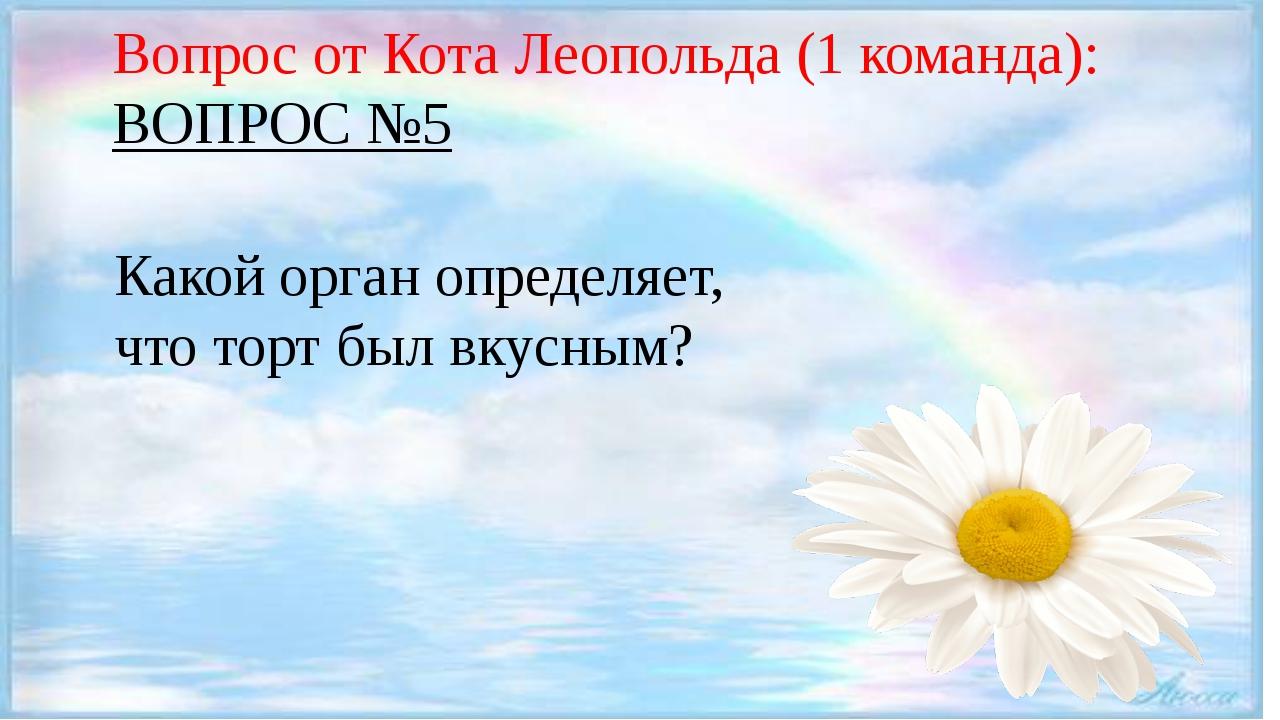 Вопрос от Кота Леопольда (1 команда): ВОПРОС №5 Какой орган определяет, что...