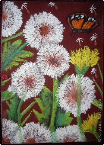 Рисование и живопись: Лилии на наждачной бумаге Карандаш. Фото 2