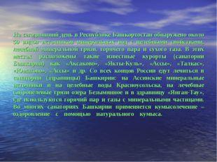 На сегодняшний день в Республике Башкортостан обнаружено около 50 видов источ