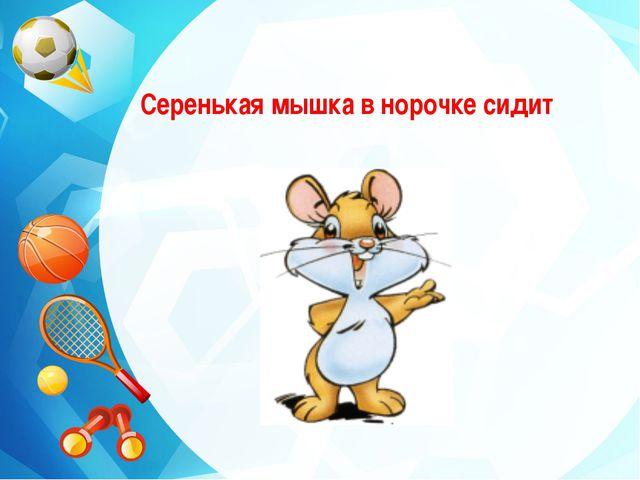 Серенькая мышка в норочке сидит
