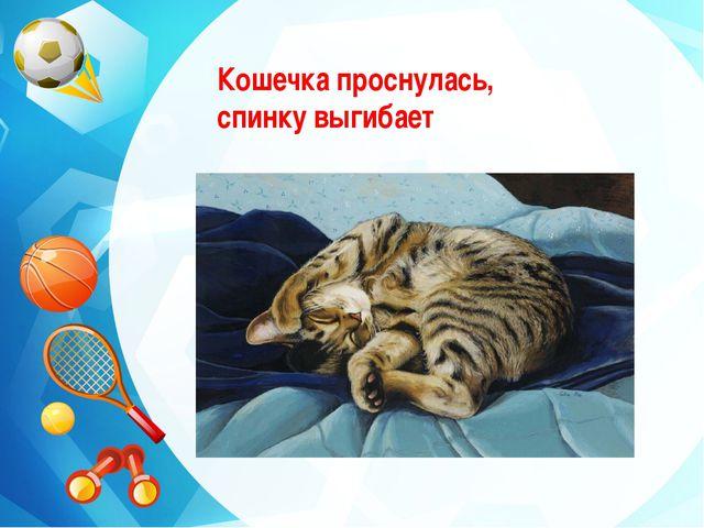 Кошечка проснулась, спинку выгибает