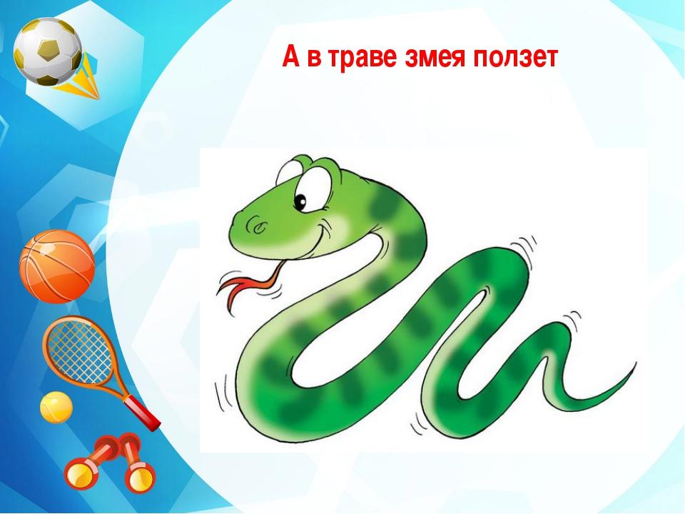 А в траве змея ползет