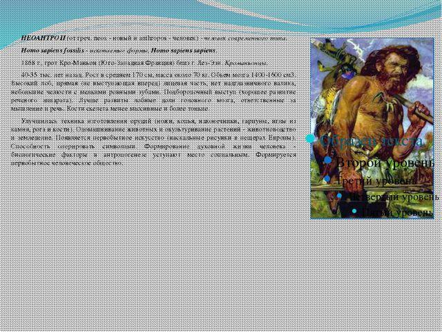 НЕОАНТРОП (от греч. neos - новый и anthropos - человек) - человек современн...