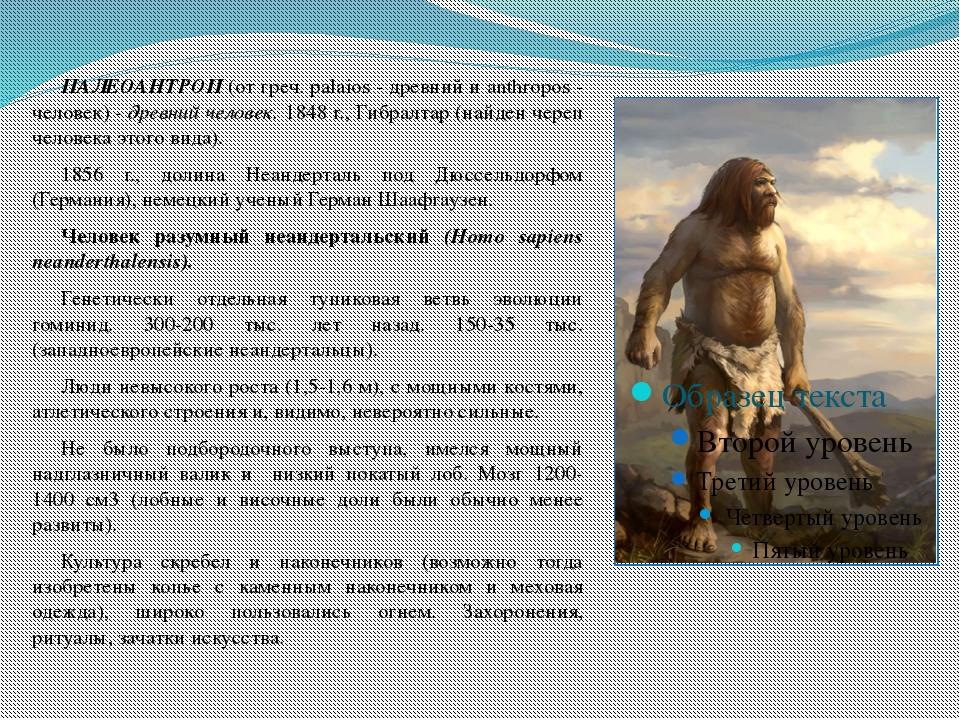 ПАЛЕОАНТРОП (от греч. palaios - древний и anthropos - человек) - древний че...