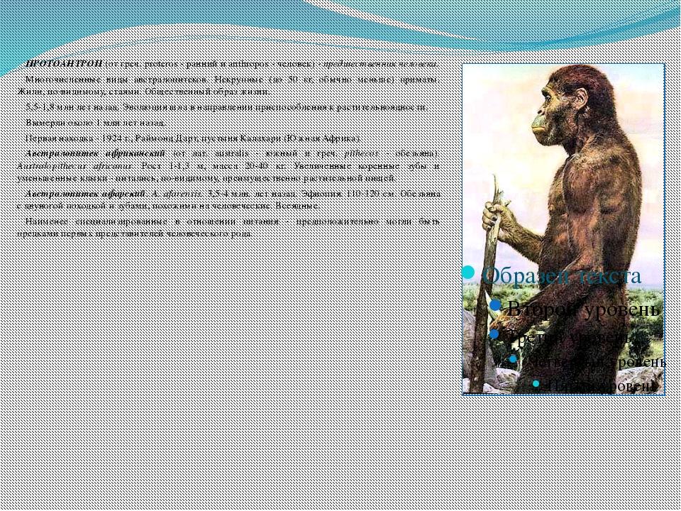 ПРОТОАНТРОП (от греч. proteros - ранний и anthropos - человек) - предшестве...