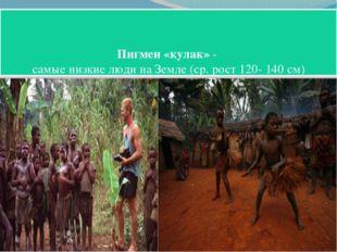 Пигмеи «кулак» - самые низкие люди на Земле (ср. рост 120- 140 см)