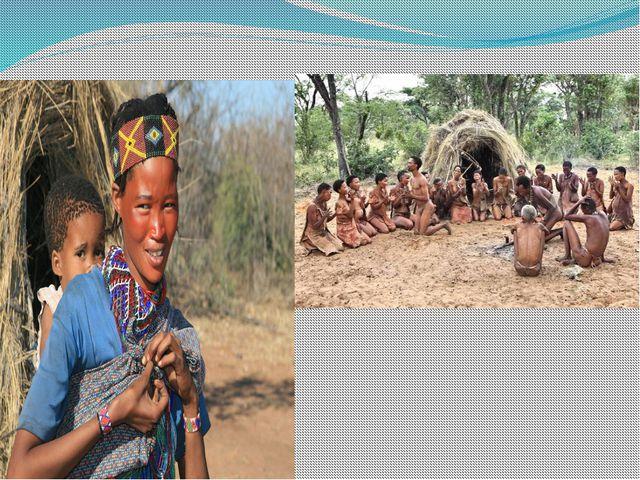 БУШМЕНЫ «лесной человек» - выселенные в пустыню Намиб