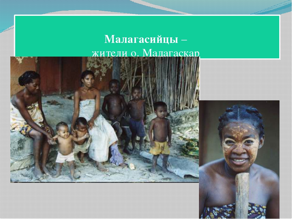 Малагасийцы – жители о. Мадагаскар