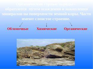 Органические горные породы – образуются путем осаждения и накопления минерал
