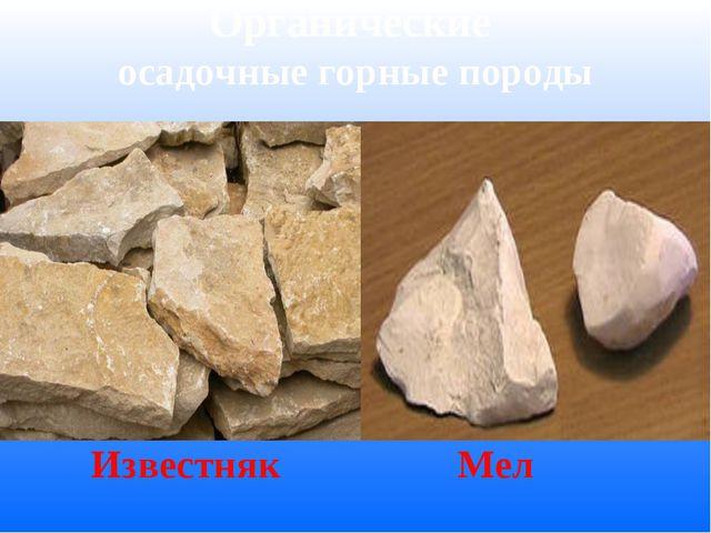 Органические осадочные горные породы Известняк Мел