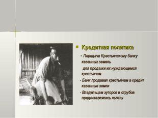 Кредитная политика - Передача Крестьянскому банку казенных земель для продаж