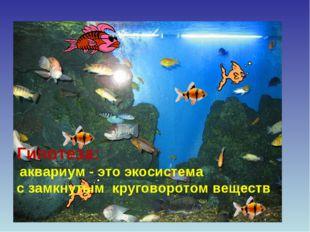 Гипотеза: аквариум - это экосистема с замкнутым круговоротом веществ