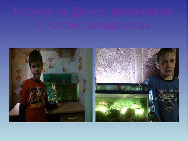 Кирилл и Денис рассказали о своих аквариумах