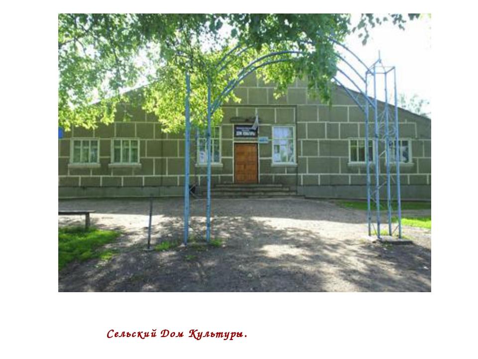 Сельский Дом Культуры.